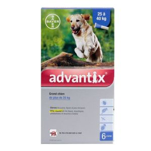 Advantix grand chien 25 à 40kg - 6 pipettes